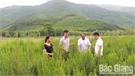 Phát triển nông sản ở vùng cao Sơn Động