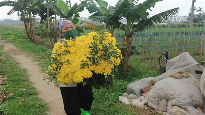 Flower village to revive production