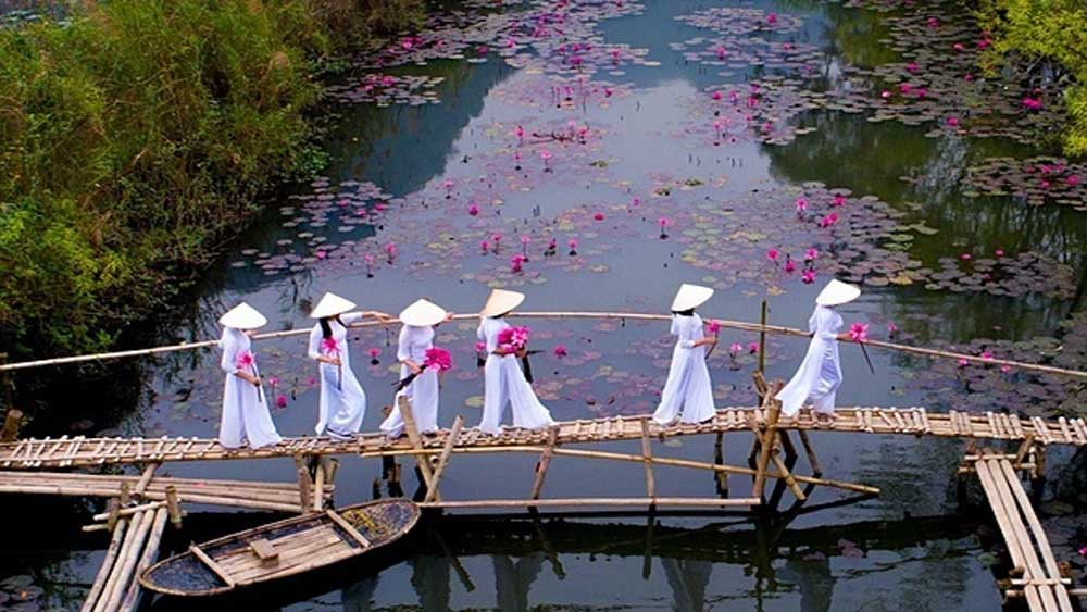 Vietnamese photographer, Agora's Spring photo contest,  beautiful shot,  water lilies, traditional Vietnamese dress, outcroppings and wild flowers