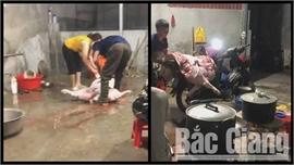Chủ cơ sở giết mổ lợn bị xử phạt 3,5 triệu đồng
