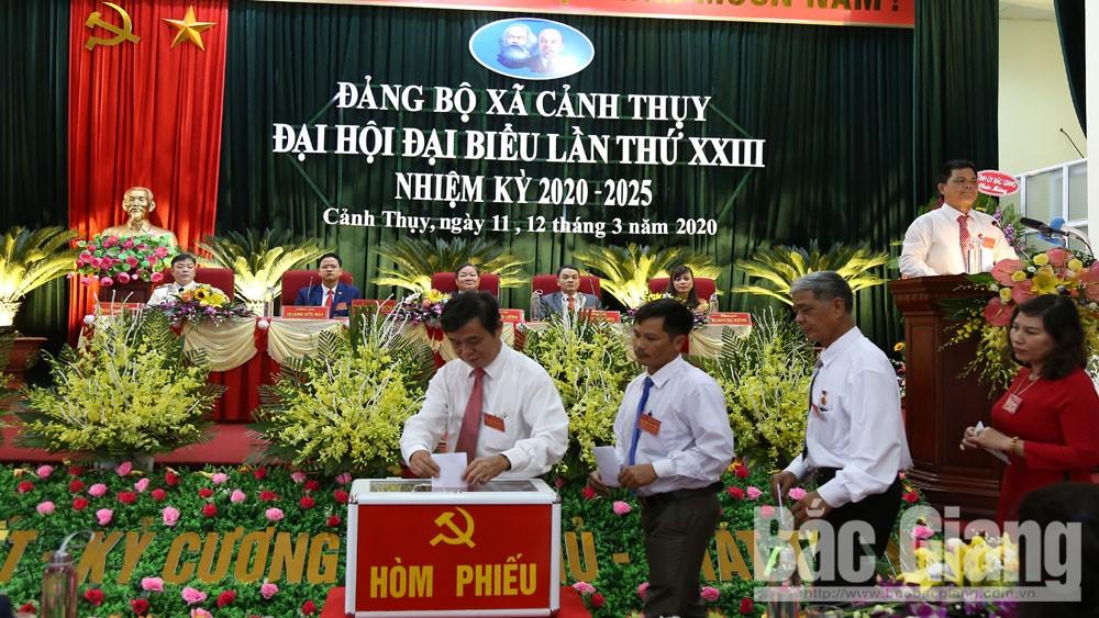 Đại hội Đảng, Đảng bộ, chi bộ, Bắc Giang