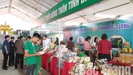 Bắc Giang: Tổ chức đánh giá và phân hạng sản phẩm OCOP tỉnh