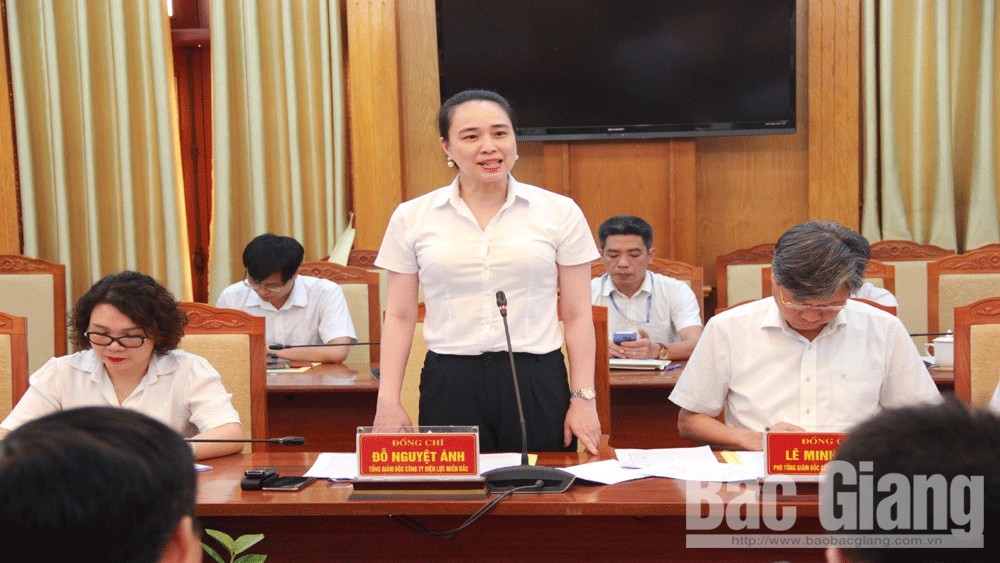 Bac Giang province, sufficient power supply, living and production power, Northern Power Corporation,  power supply, Bac Giang Power Company, commodity power, high industrial growth rate