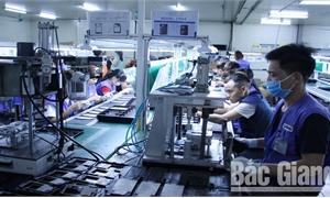Nỗ lực vượt khó trong sản xuất, kinh doanh