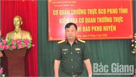 Sơn Động: Xây dựng lực lượng phòng không nhân dân vững mạnh