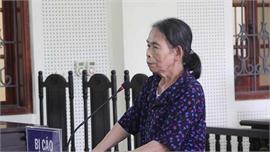 Bà lão bị phạt 12 năm tù vì sát hại cháu nội