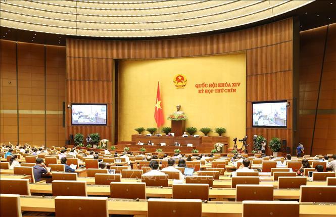 Quốc hội cho ý kiến, thảo luận trực tuyến, thí điểm, tổ chức, mô hình, chính quyền đô thị, Đà Nẵng, Nghị quyết