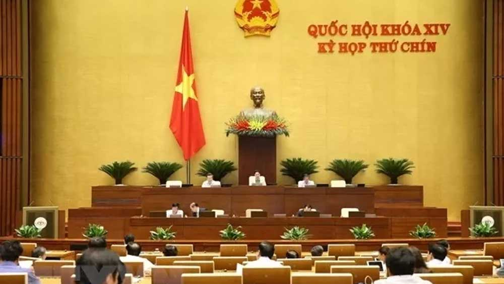 Legislators, two draft laws, draft resolution, online meeting,  ninth session,  14th National Assembly, verification report, Construction Law