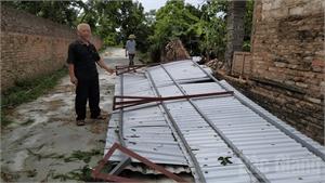 Giông lốc tại huyện Tân Yên (Bắc Giang), thiệt hại hơn 10 tỷ đồng