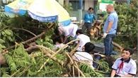 Bộ trưởng Phùng Xuân Nhạ gửi lời thăm hỏi tới học sinh trong vụ tai nạn do cây đổ