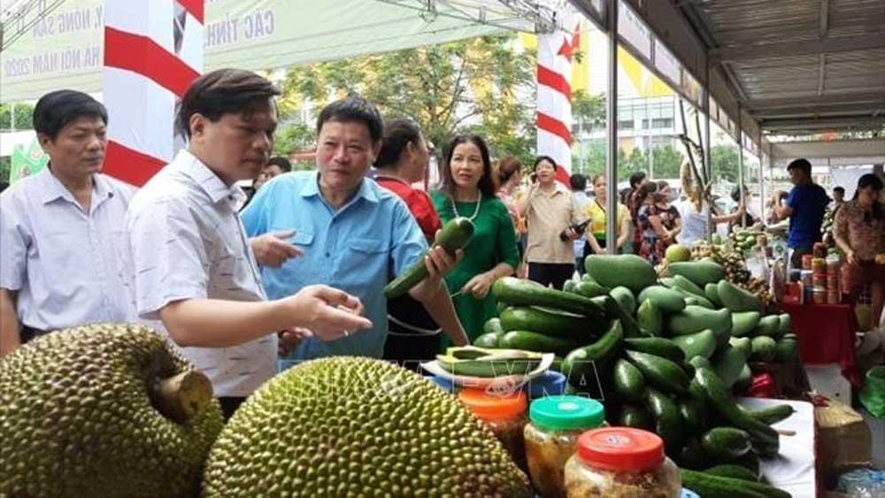 Gian hàng giới thiệu sản phẩm của các tỉnh, thành phố trưng bày tại Big C Thăng Long.