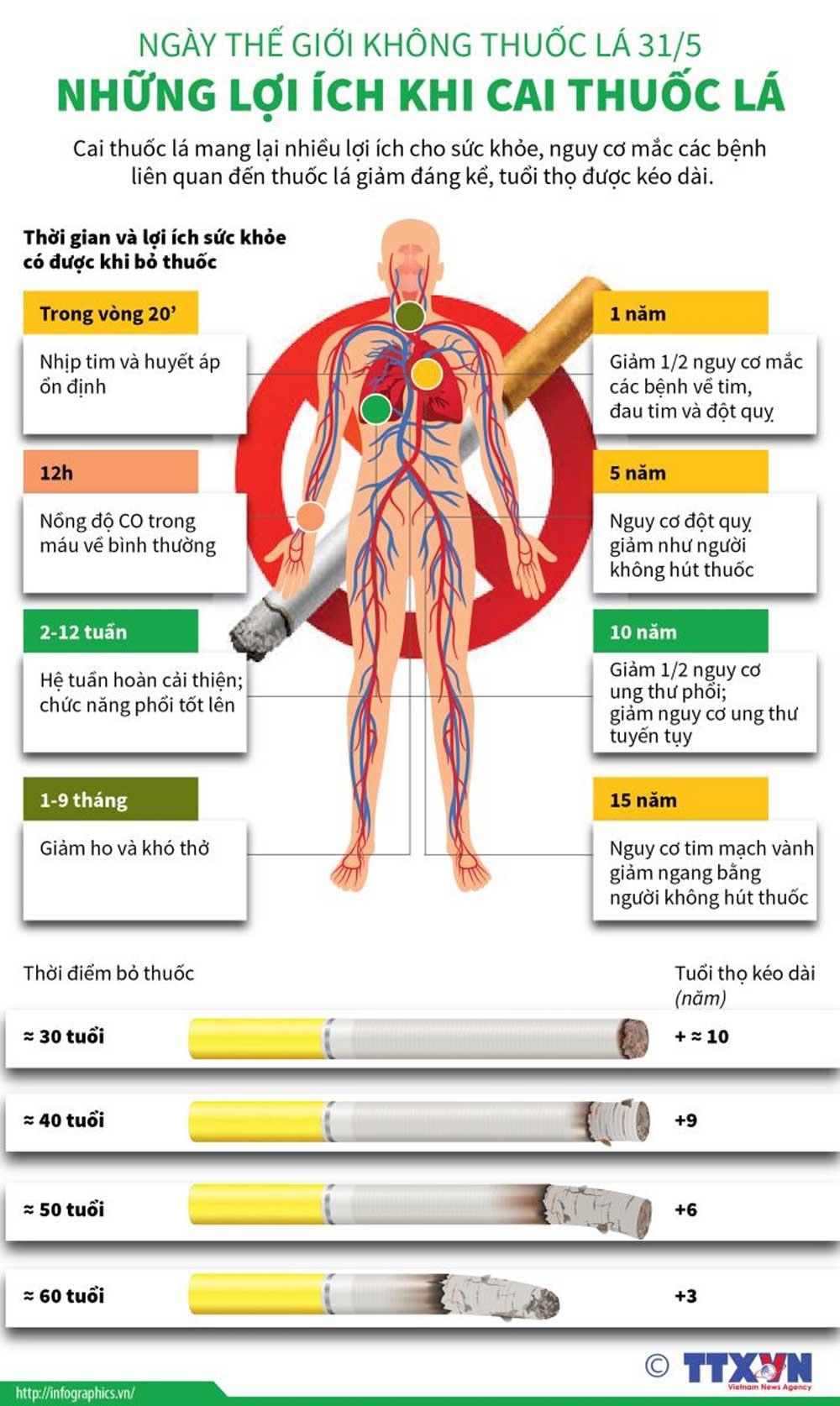 Ngày thế giới không thuốc lá 31/5, những lợi ích, khi cai thuốc lá, tuổi thọ được kéo dài, giảm nguy cơ mắc bệnh