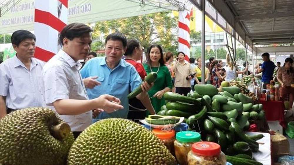 Local agricultural products, Hanoi, week-long trade fair,  fruits and agricultural products, Big C Thang Long supermarket, domestic consumption