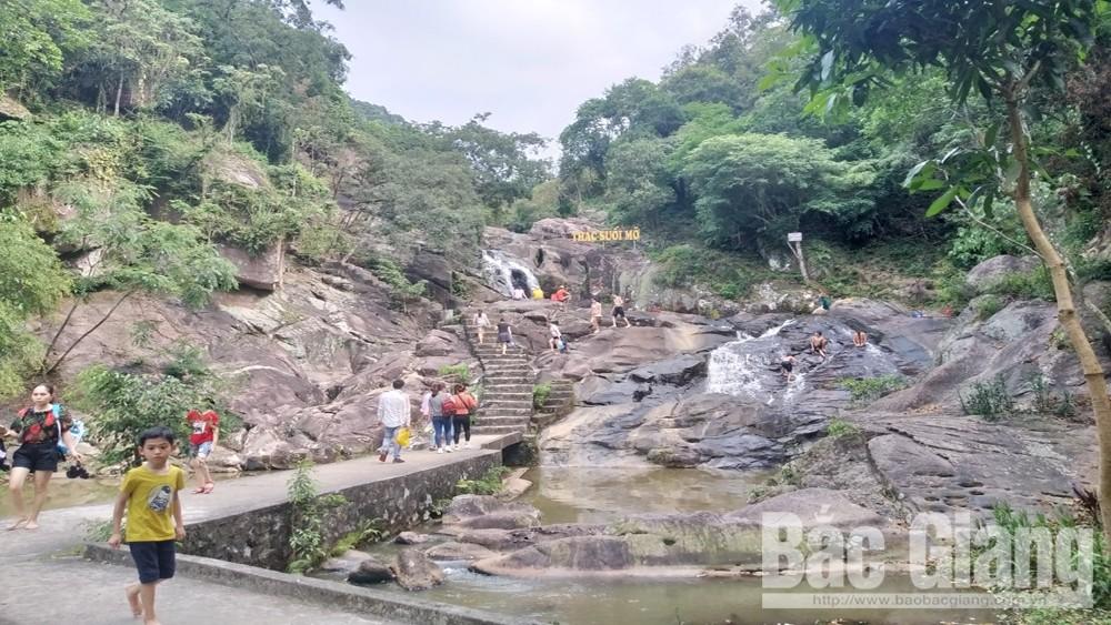 Du lịch suối Mỡ, Lục Nam, 4,5 vạn du khách