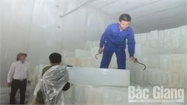 Lục Ngạn sản xuất hàng phụ trợ, dịch vụ mùa vải: Đáp ứng đủ nhu cầu