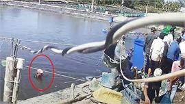 Vụ thương lái dàn cảnh trộm tôm nguyên liệu ở Cà Mau: Khởi tố, bắt tạm giam thêm 6 đối tượng liên quan