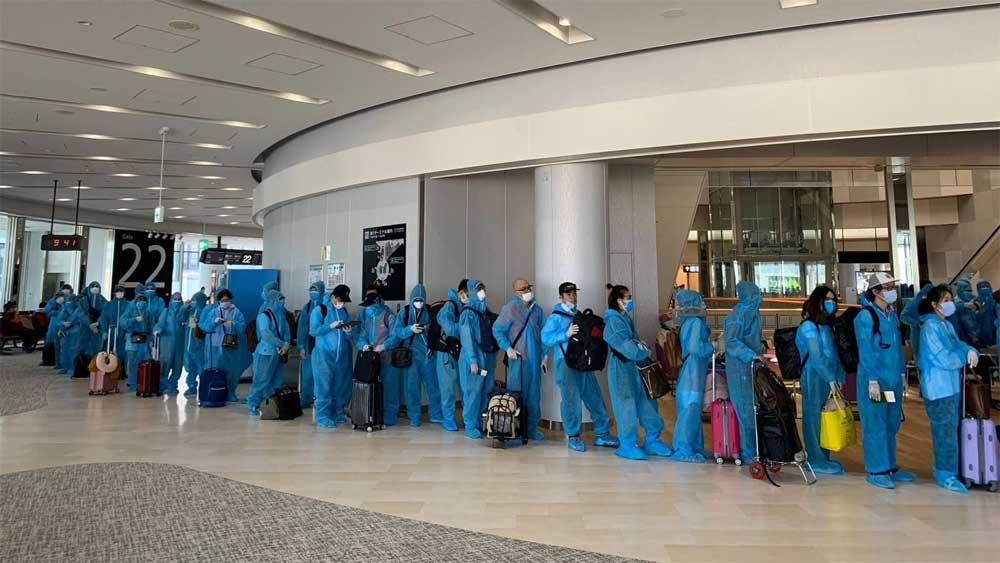 Over 340 Vietnamese citizens return home safely from Japan