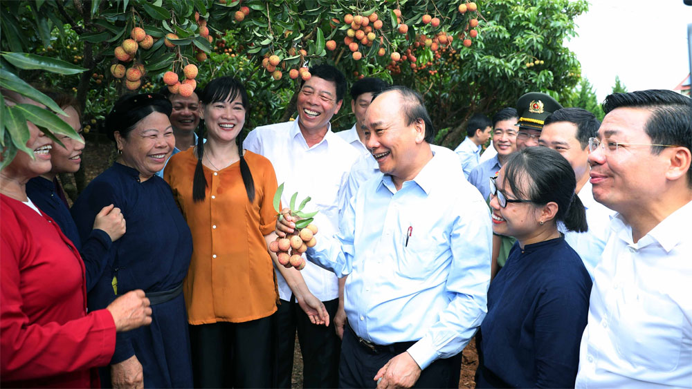 PM attends ceremony to send off trucks carrying lychee to major markets