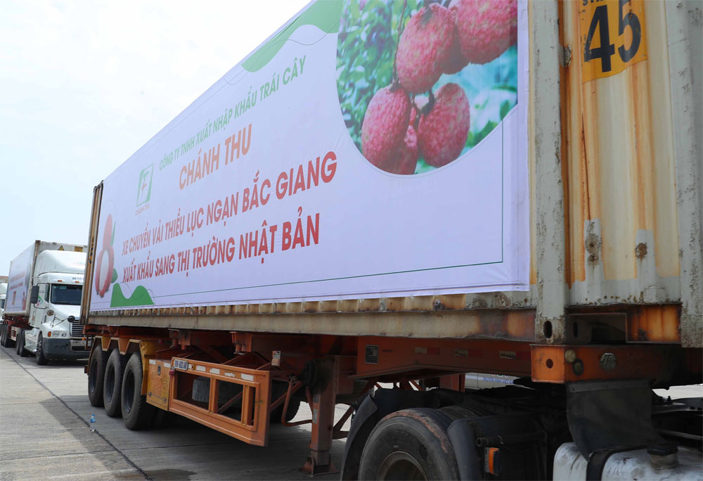 PM, attends ceremony, send off trucks, major markets, Bac Giang province, domestic and foreign markets, morning's teleconference, lychee consumption, Covid-19 pandemic