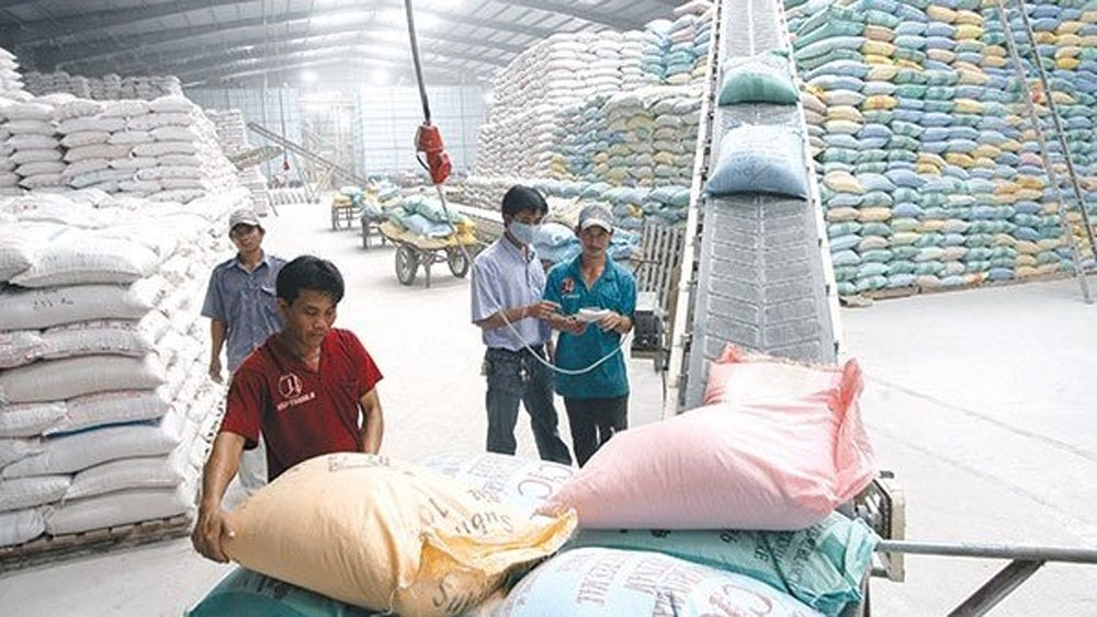 Vietnam, rice export revenue, first five months, plenty of opportunities, rice exports,  more competitive prices, shipment volume