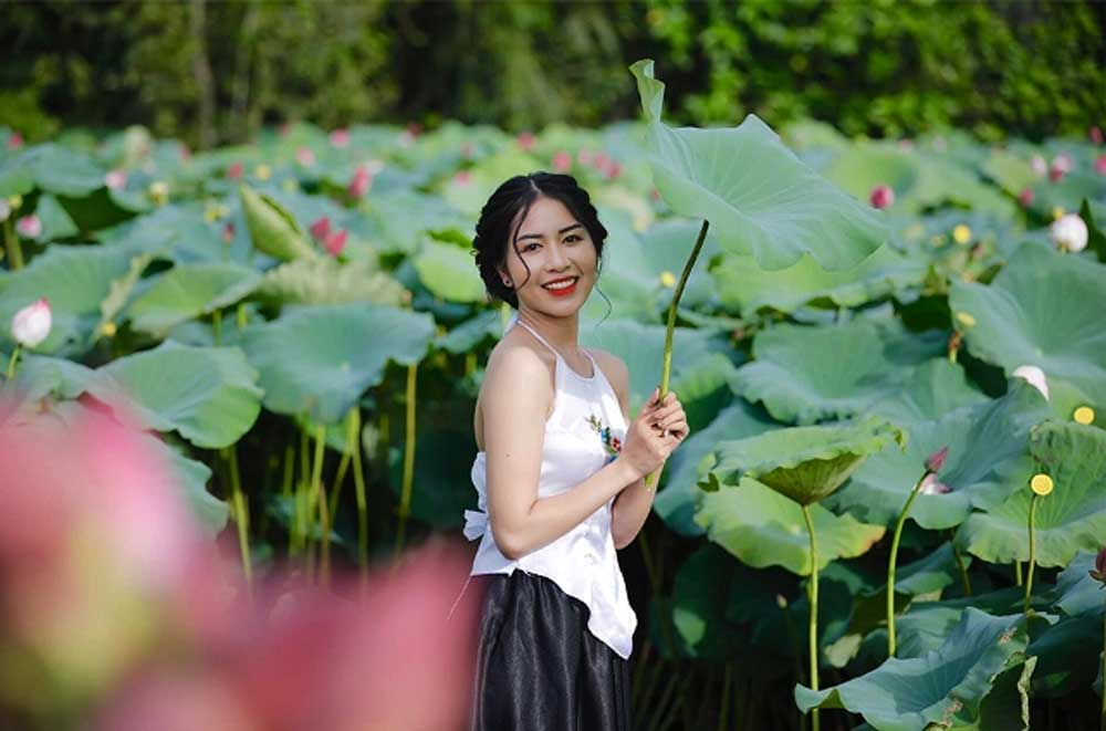 Lotus flowers bloom, outskirts of Hanoi, lotus pond, full bloom, fragrant lotus flowers, charming landscape, limestone mountains