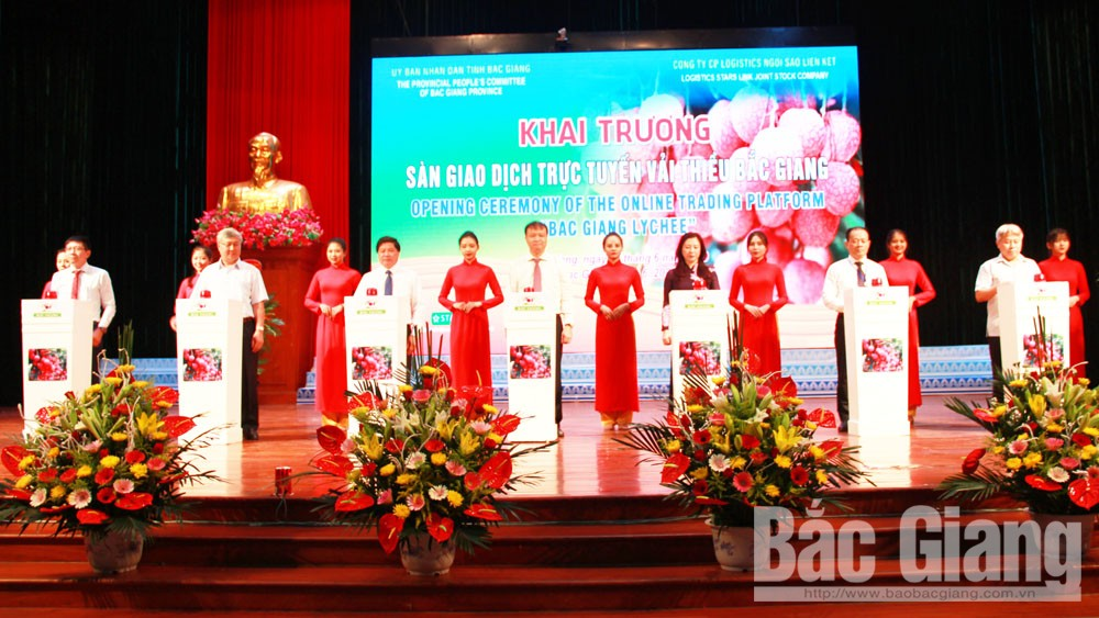 Bac Giang province, trade connection, expanding markets for lychee, lychee season, lychee consumption and promotion, socio-economic development, online trading floor