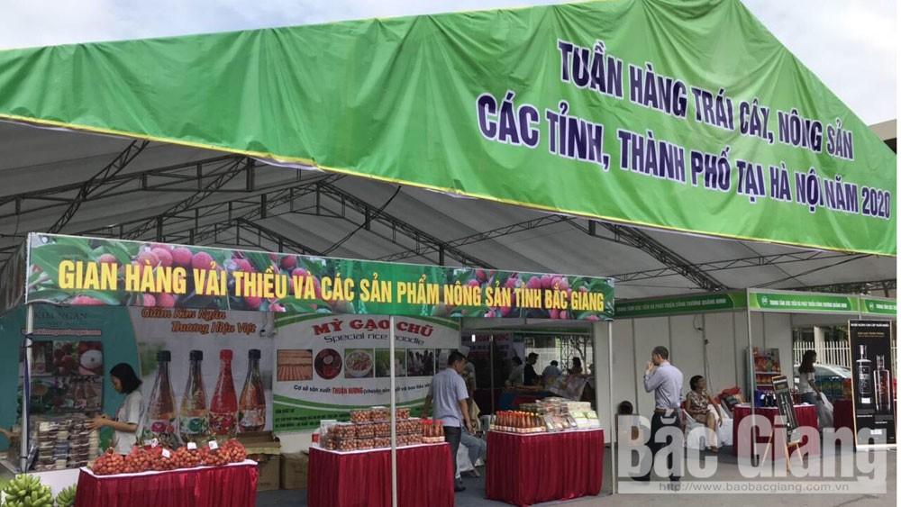 Hơn 1 tấn vải thiều Lục Ngạn được tiêu thụ tại Hà Nội với giá từ 45 đến 55 nghìn đồng/kg
