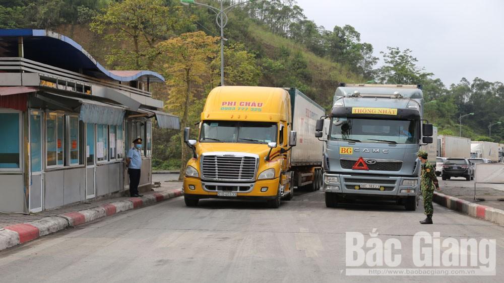Xuất khẩu vải thiều Bắc Giang qua cửa khẩu tỉnh Lạng Sơn: Tạo thuận lợi thông quan nhanh nhất