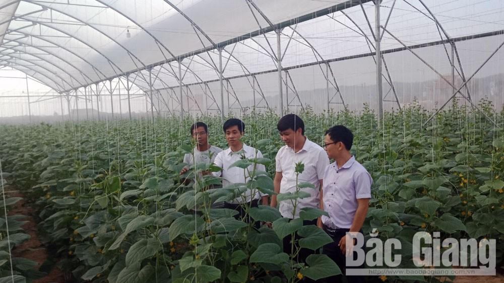Yên Dũng: Luân chuyển 6 cán bộ huyện giữ chức danh chủ chốt ở xã, thị trấn