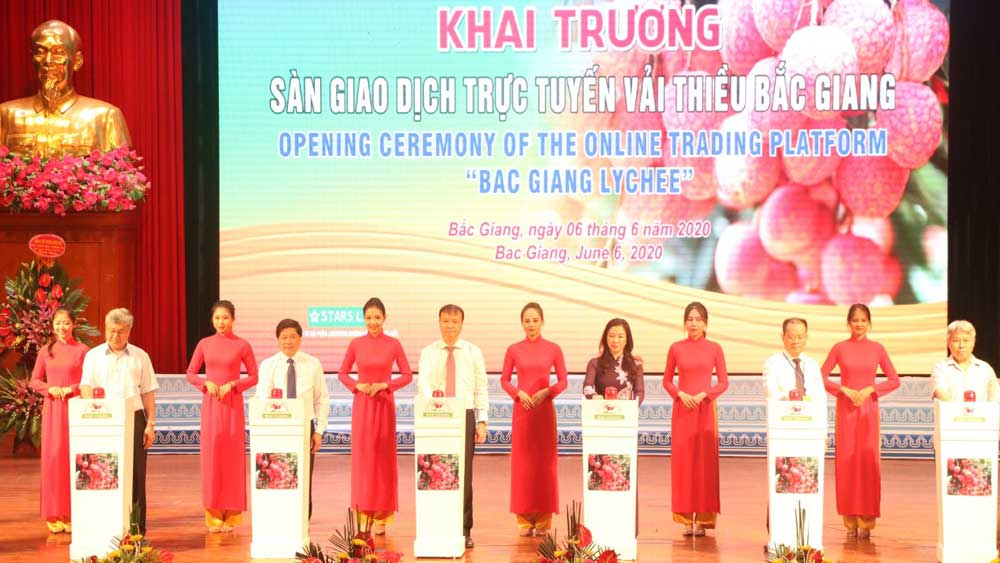 Bac Giang province, Encouraging overseas Vietnamese, introduce and consume, Vietnamese goods, distribution channels, external task to overseas Vietnamese, Vietnamese community