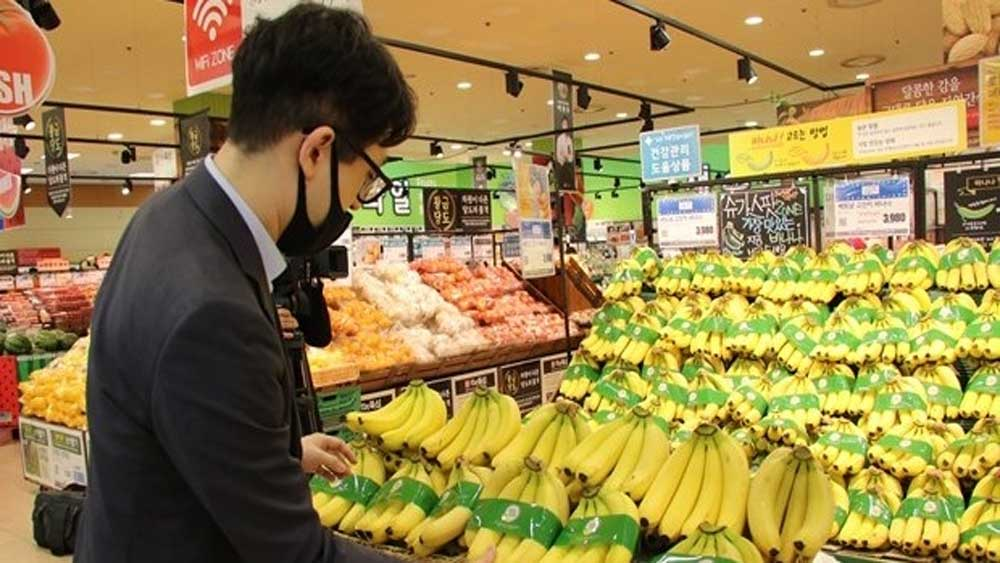 Vietnamese banana officially enters Lotte Mart in RoK