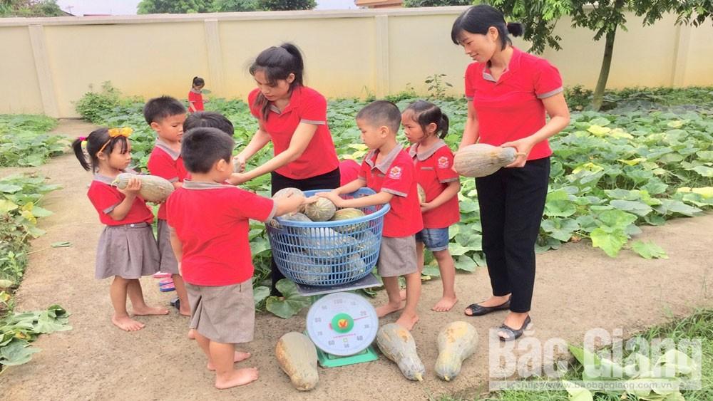Việt Yên: Nhân rộng mô hình vườn rau xanh trường học