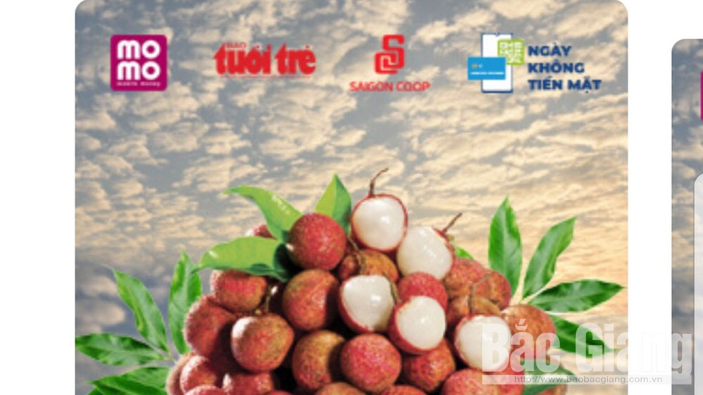 Over 37 tonnes of lychee sold via MoMo pocket