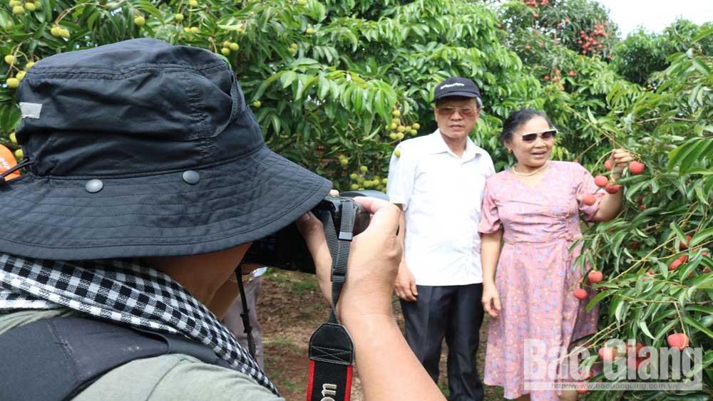 Mùa vải thiều: Các nhà vườn Bắc Giang rộng cửa đón khách