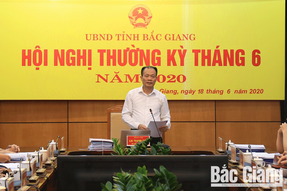 Bac Giang province, new investment wave, regular meeting, Covid-19 pandemic, comprehensive socio-economic development, disbursed public investment capital