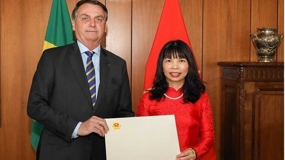 Brazilian President highly values ties with Vietnam