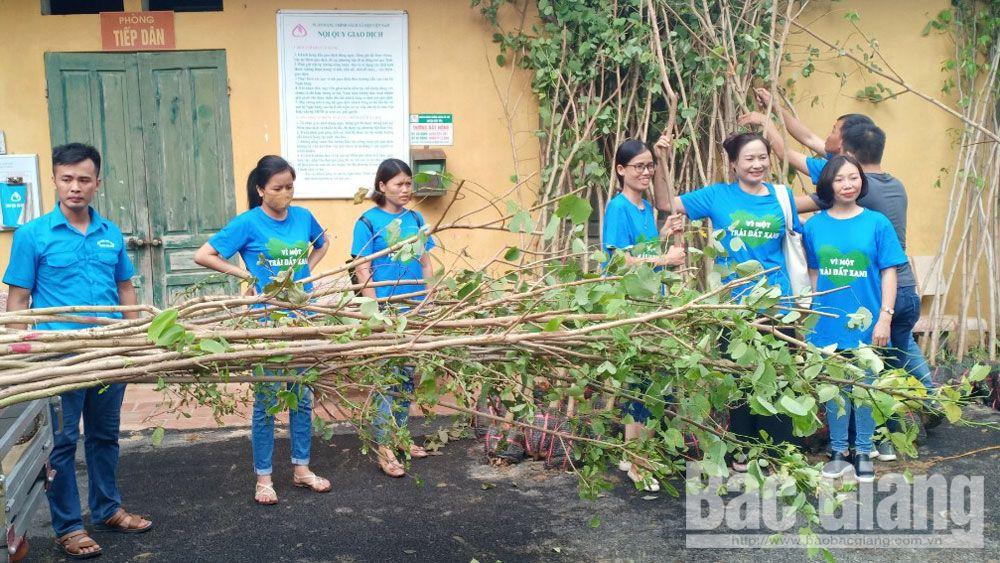 Trồng cây xanh hưởng ứng Tháng hành động Vì môi trường