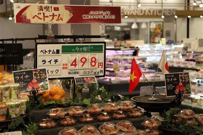 Luc Ngan lychee is sold at high price in Japan
