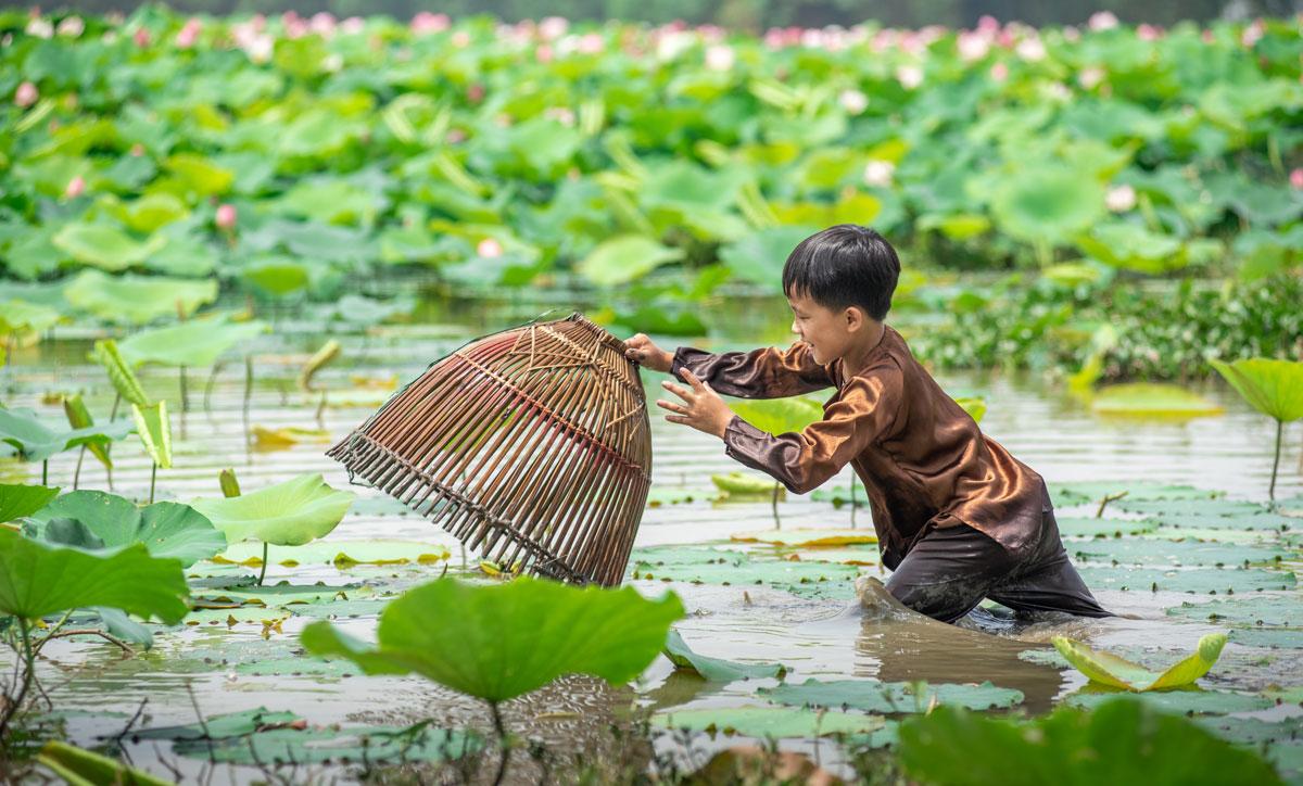 Bắc Giang, Ngút mắt đầm sen, huyện Việt Yên, Yên Dũng, Lục Nam, Thành Sơn