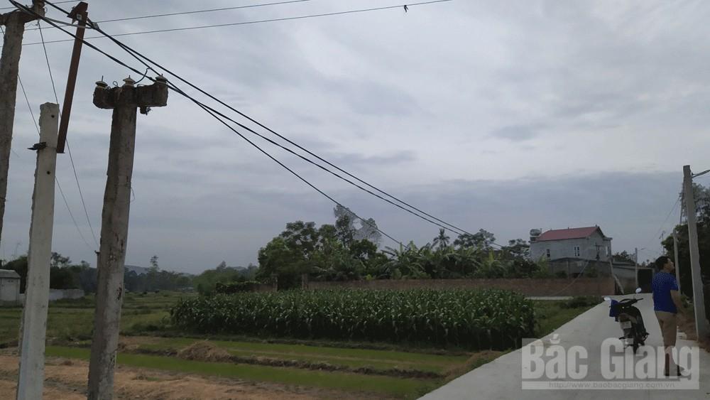 Khắc phục tình trạng điện yếu tại xã Cao Xá, huyện Tân Yên