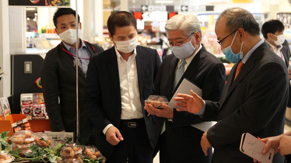 Vải thiều Lục Ngạn bắt đầu chiếm lĩnh thị trường Nhật Bản