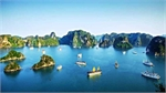 Ha Long Bay cruises regain bustle
