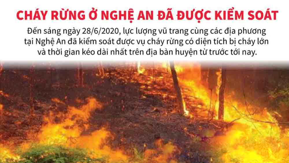 Cháy rừng ở Nghệ An đã được kiểm soát