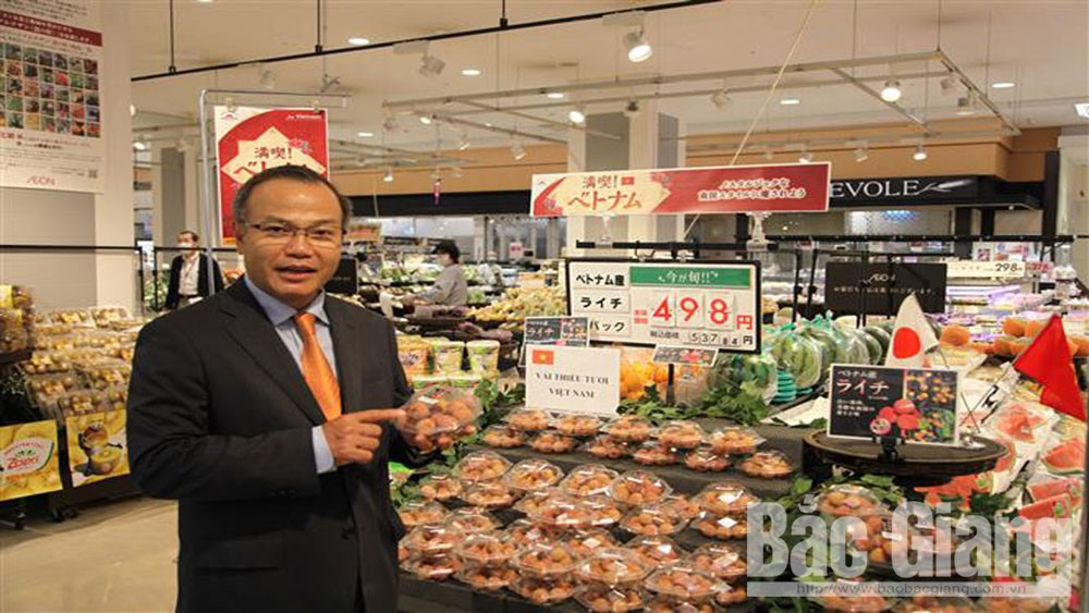 Luc Ngan lychee exported to many high-end markets
