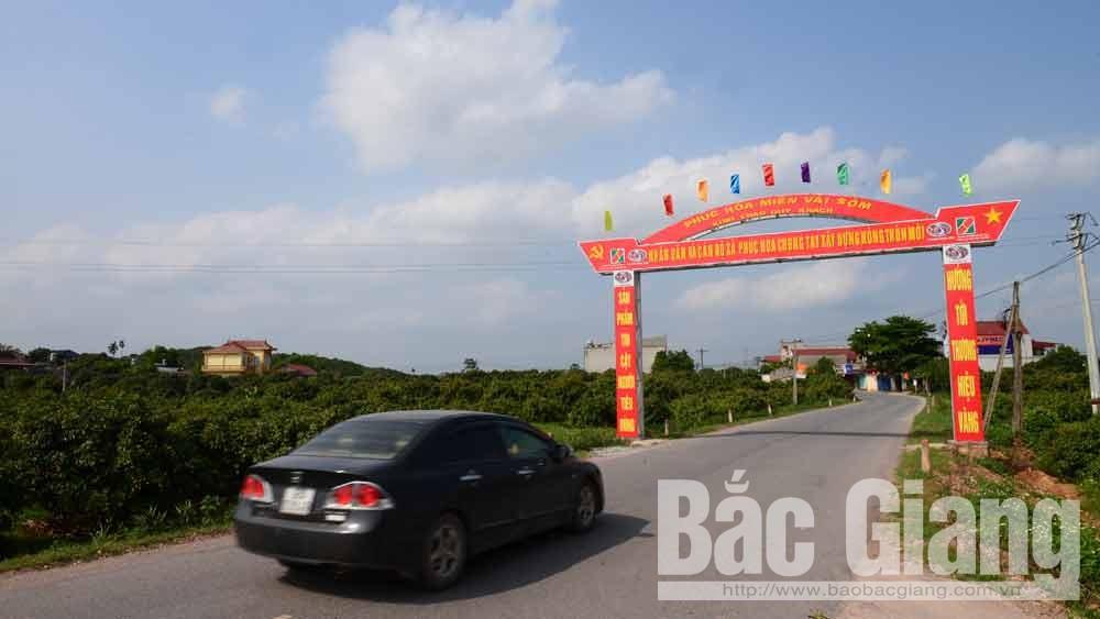 Huyện Tân Yên được công nhận đạt chuẩn nông thôn mới