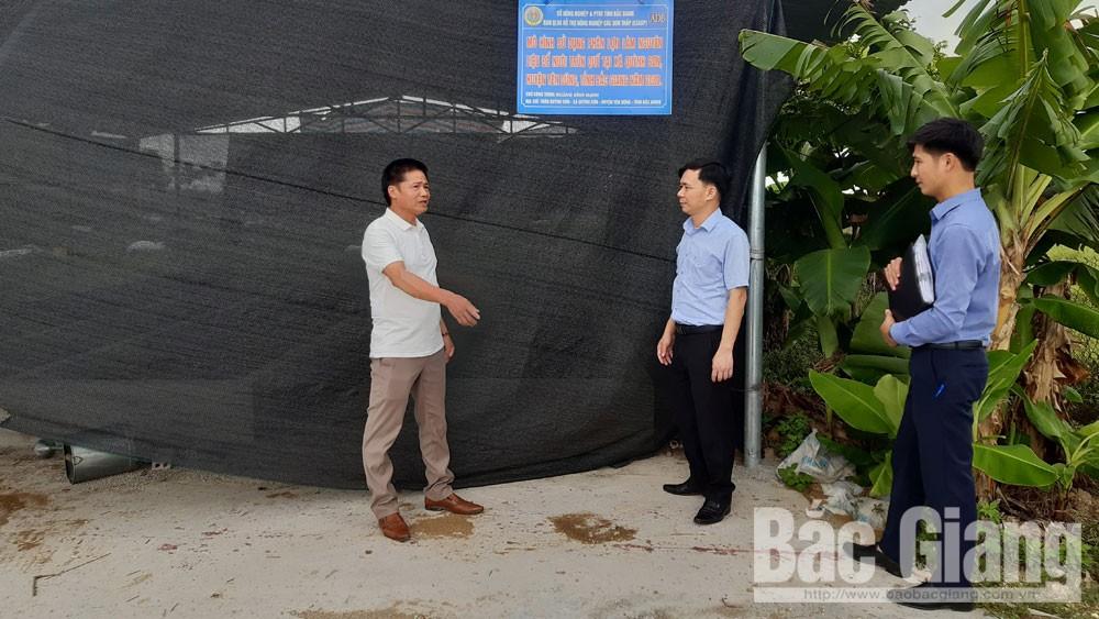 Dự án hỗ trợ nông nghiệp các bon thấp tỉnh Bắc Giang: Nhiều lợi ích, cải thiện môi trường sống