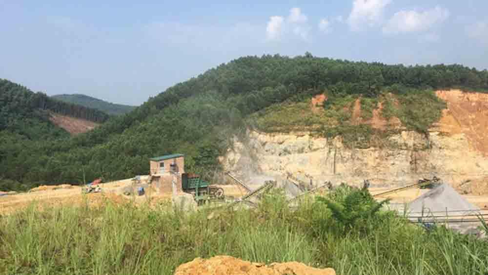 hủy hoại tài sản, chặt cây trên đất của mình, Sơn Động Bắc Giang