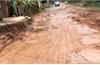 Lạng Giang: Người dân khổ vì đường xuống cấp