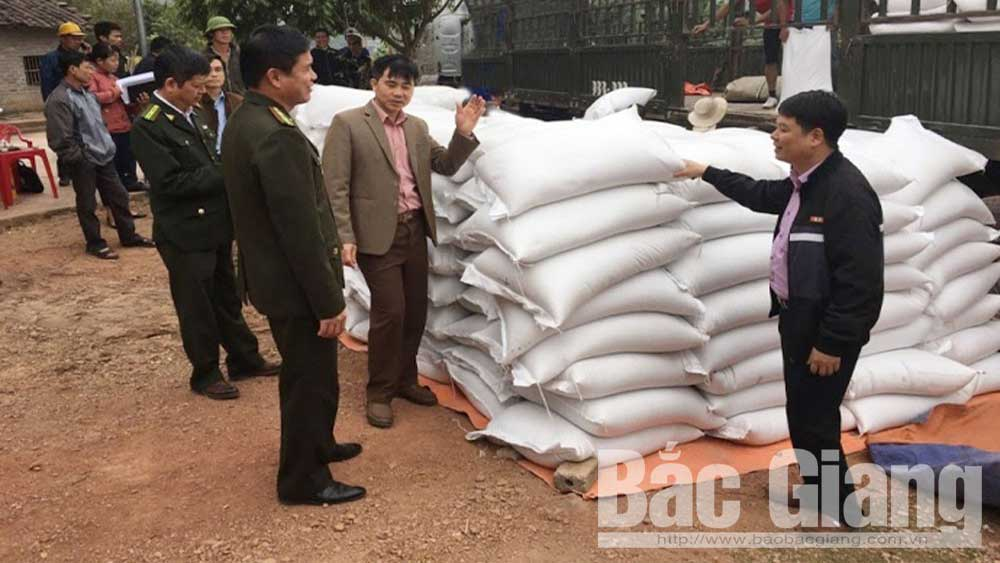 Bac Giang province, Rice Support Project, ethnic minority groups, poor King households, difficult areas, forest plantation, rice farming