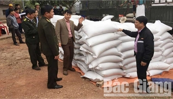 Bac Giang adjusts Rice Support Project to ethnic minority groups